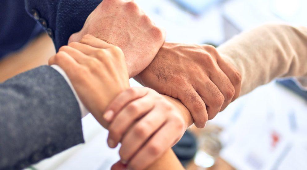 Vier Hände halten zusammen und bilden einen Knoten